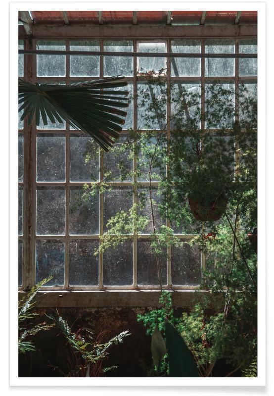 Feuilles & Plantes, The Tropical Glasshouse affiche
