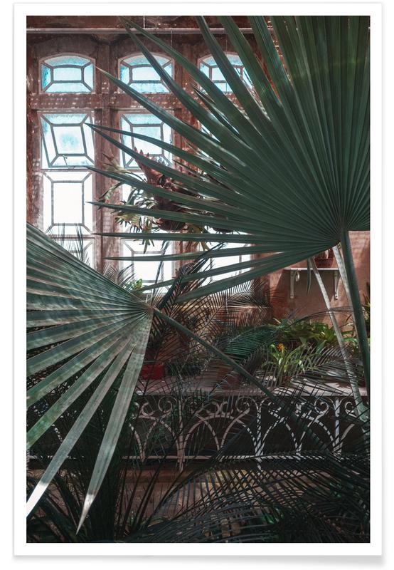 Feuilles & Plantes, The Tropical Glasshouse II affiche