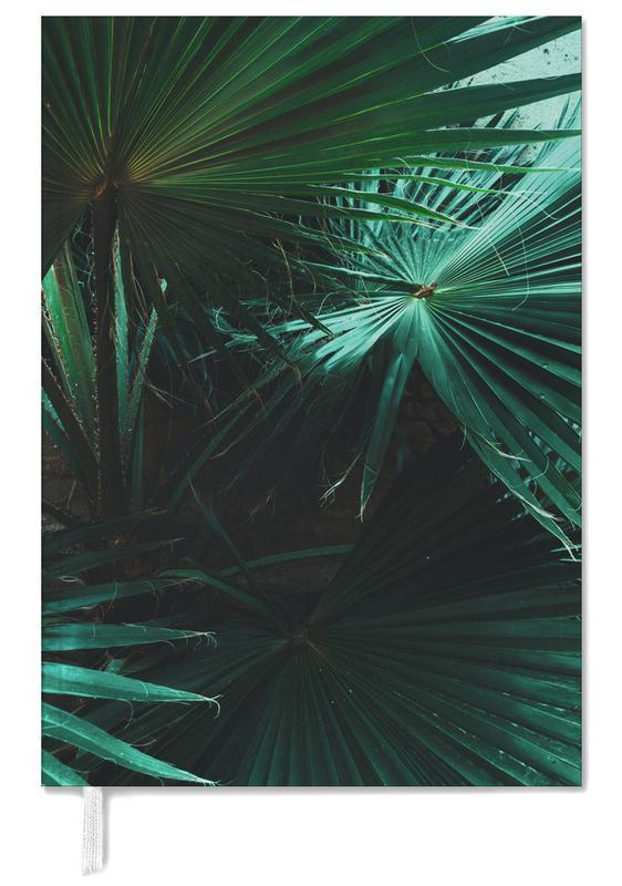 Bladeren en planten, Palmbomen, Botanical — Plant Texture 01 agenda