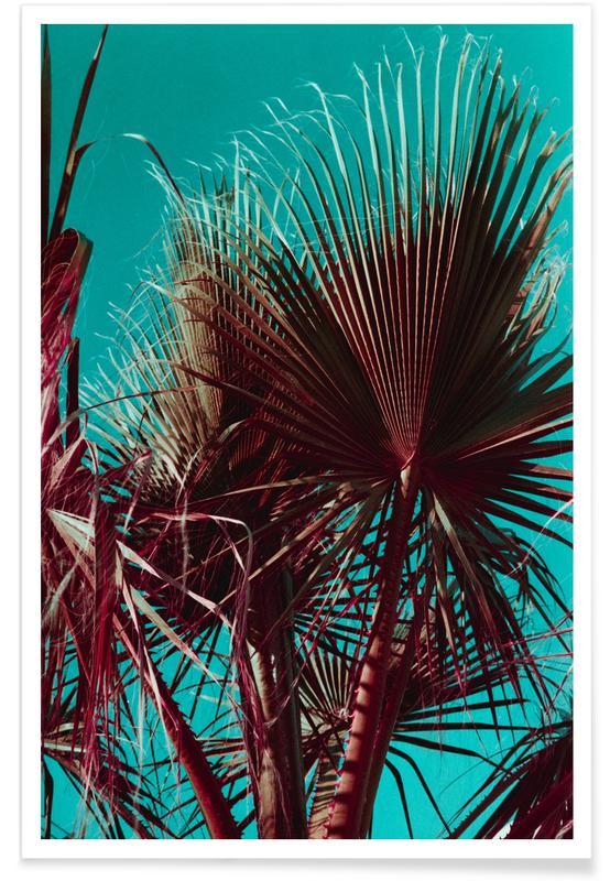 Palmiers, Palms V affiche