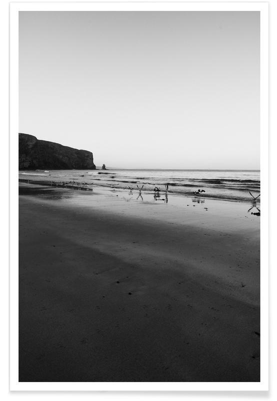 Black & White, Beaches, Morning Birds Poster