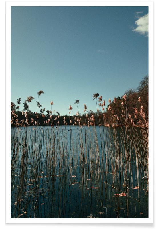 Ocean, Lake & Seascape, Nature — Grass In A Lake Poster
