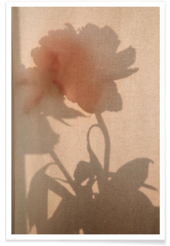 Felicitaties, Abstract — Flower Shadow II poster