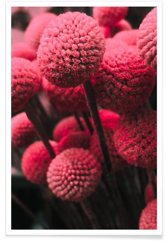 , Pink Bommels poster