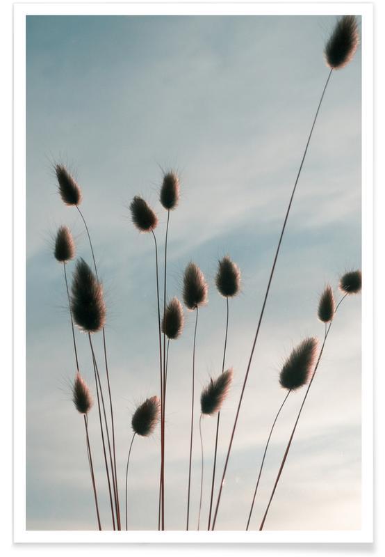 Skylines, Blätter & Pflanzen, Airy Fluff -Poster