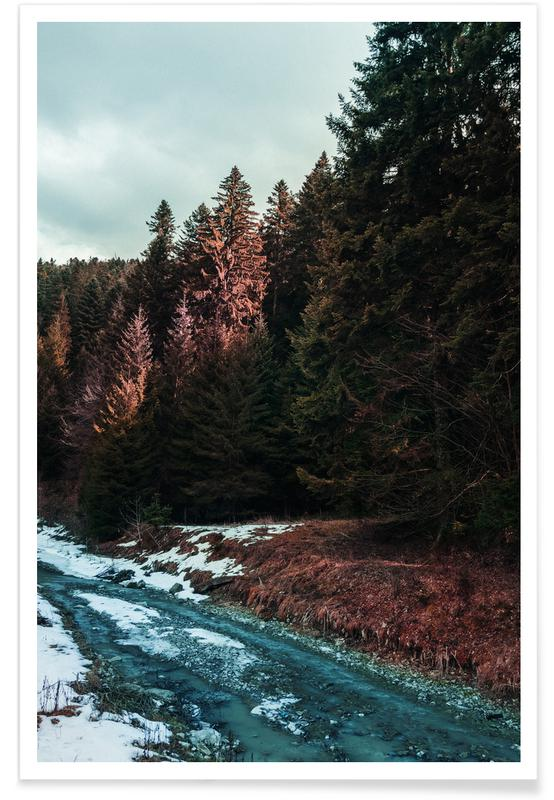 Abstract Landscapes, Forests, River By The Forest Poster