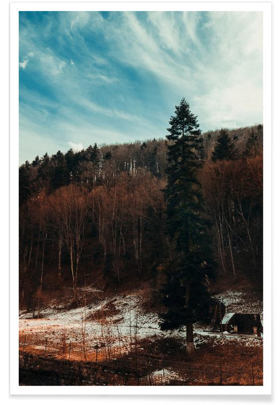 Abstract Landscapes, Forests, At The The Edge Of The Woods Poster