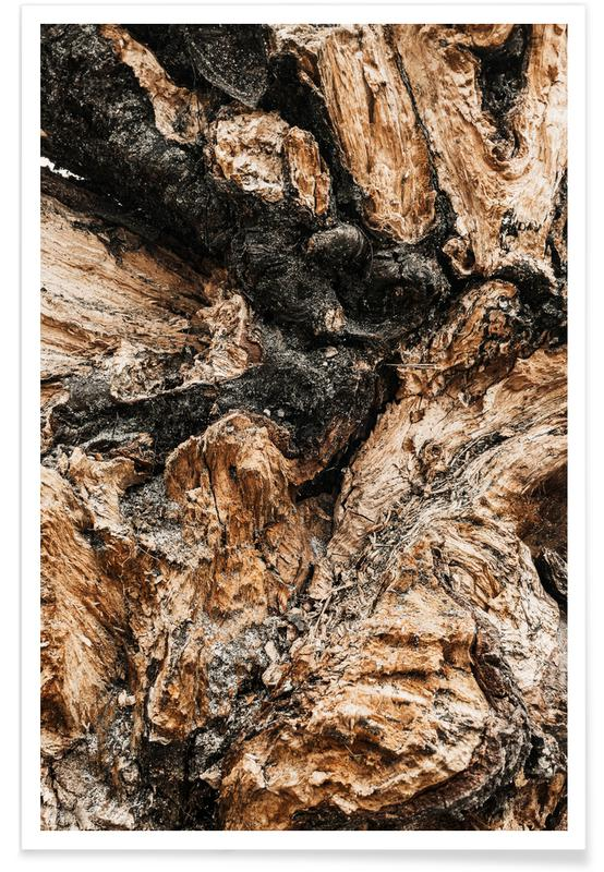 Abstract Landscapes, Artistic Wood II Poster