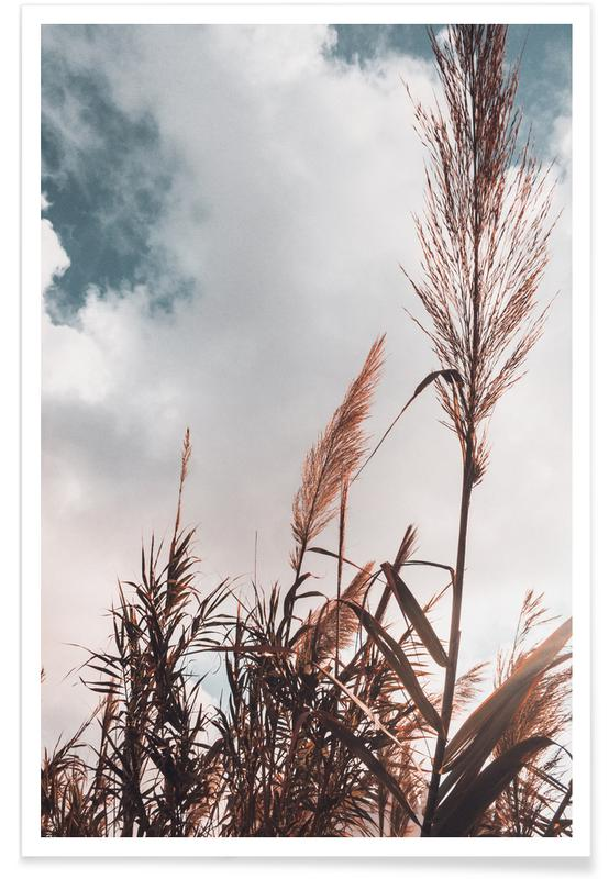 Blade & planter, Grass I Plakat