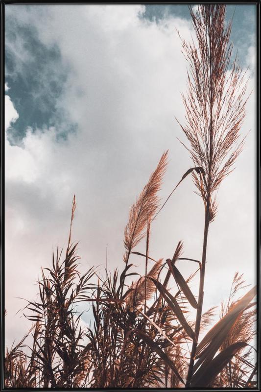 Grass I -Bild mit Kunststoffrahmen