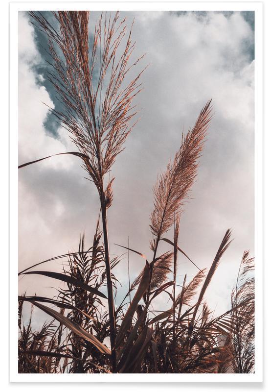 Grass II poster