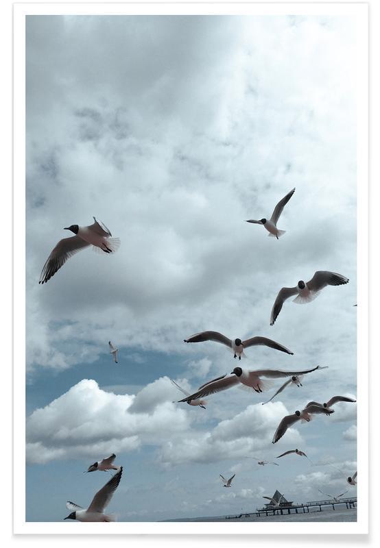 Möwen, Himmel & Wolken, Gulls VII -Poster
