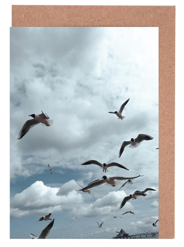 Gulls VII Greeting Card Set