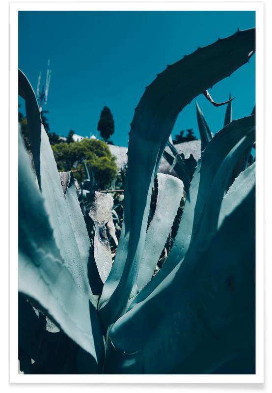 Feuilles & Plantes, Aloe Vera Leaf affiche