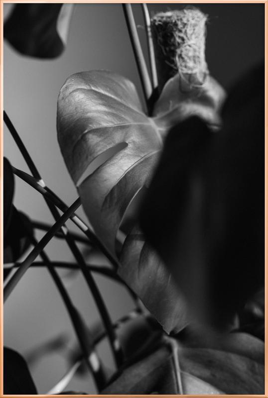 Monstera Deliciosa poster in aluminium lijst
