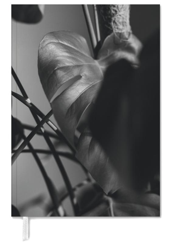 Zwart en wit, Bladeren en planten, Monstera Deliciosa agenda