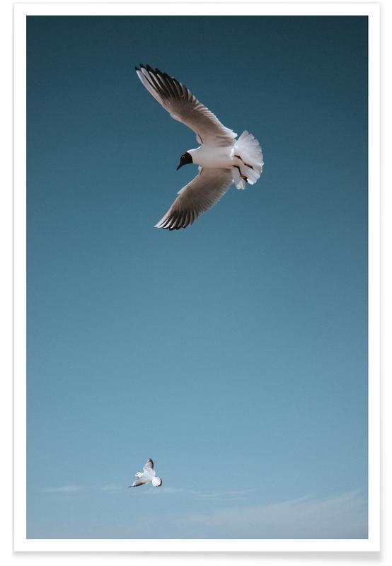 Skies & Clouds, Seagulls, Seagulls I Poster
