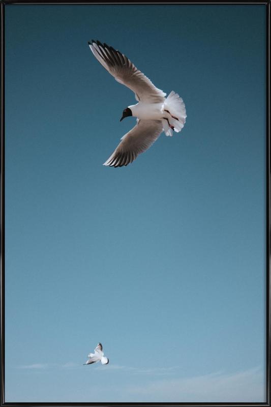 Seagulls I Framed Poster