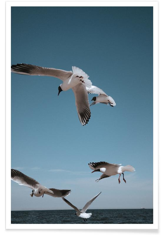 Mouettes, Seagulls II affiche