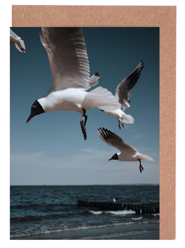 Seagulls VIII Greeting Card Set