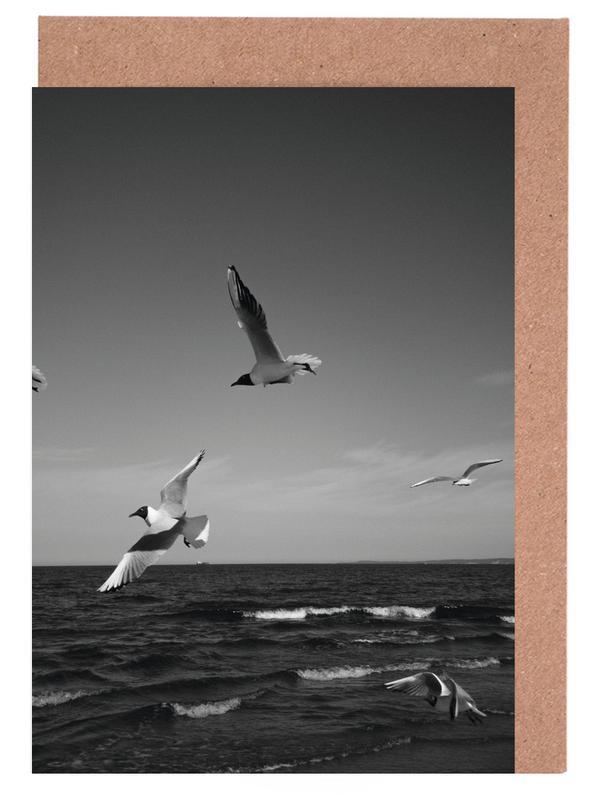 Seagulls III Greeting Card Set