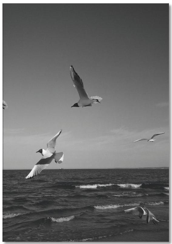 Seagulls III Notepad