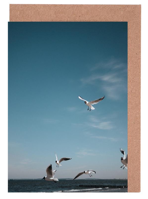 Seagulls IV Greeting Card Set
