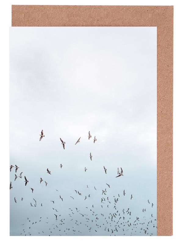 Birds in Porto Greeting Card Set