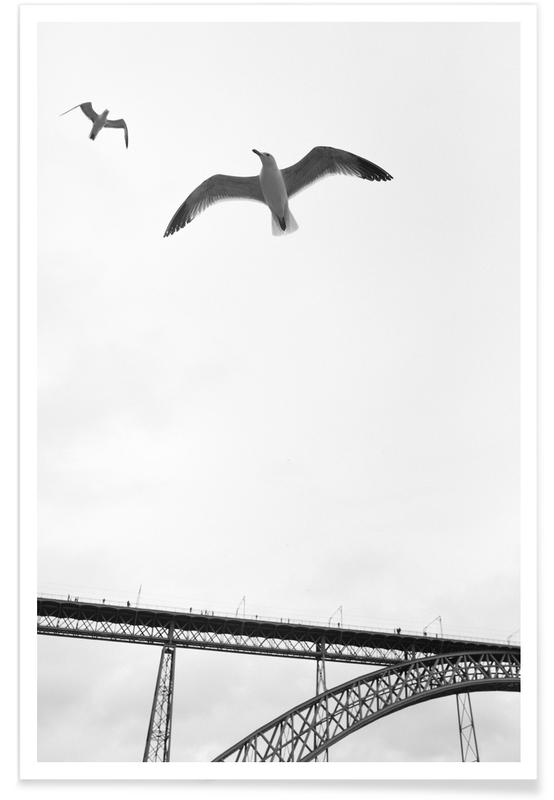 Seagulls, Black & White, Perspective Poster