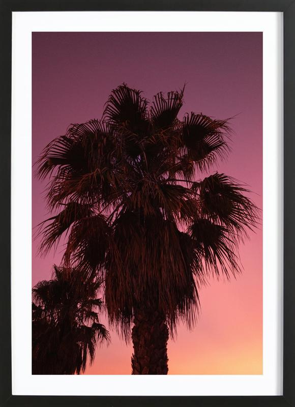 Palms at Sundown Framed Print