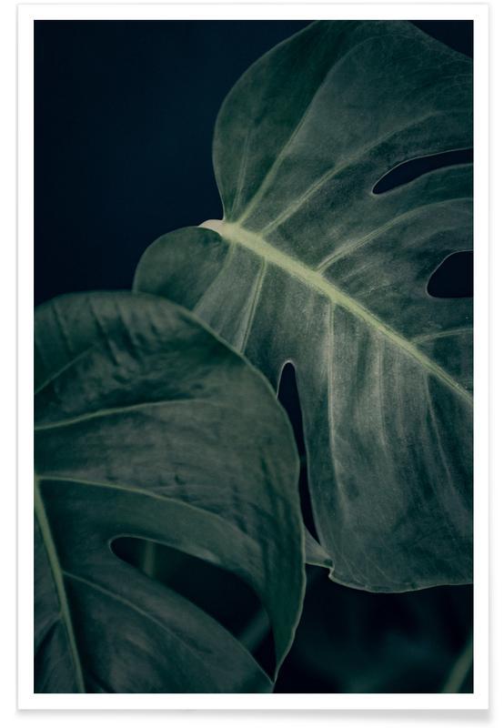 Blätter & Pflanzen, Moody Monstera 3 -Poster