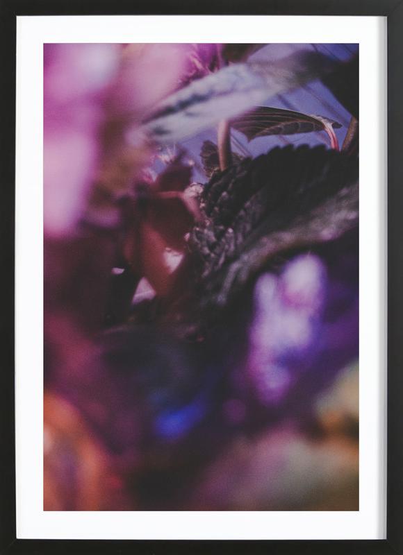 Faded Floral Purple 2 -Bild mit Holzrahmen
