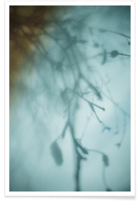 Hanging Birch -Poster