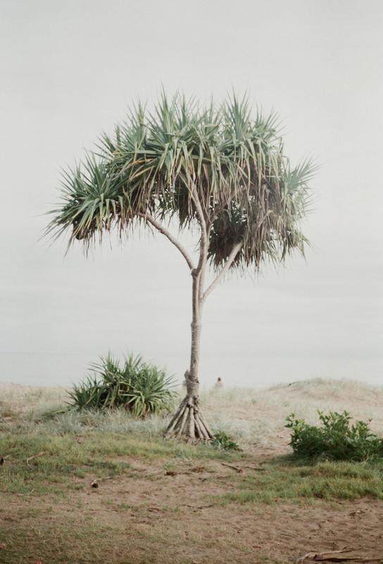 Australia -Acrylglasbild