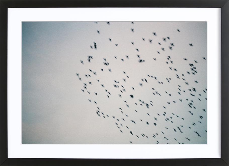 Wild and Free -Bild mit Holzrahmen