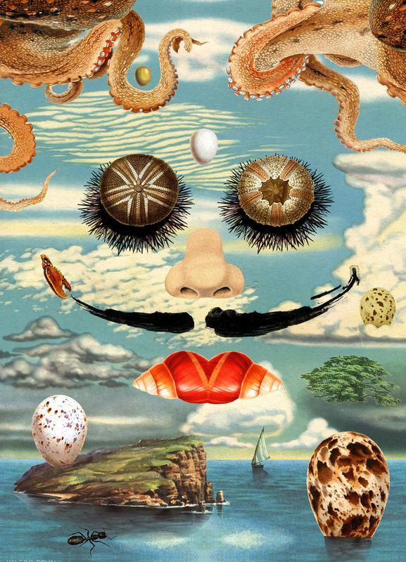 Dali & The Sea Urchins toile