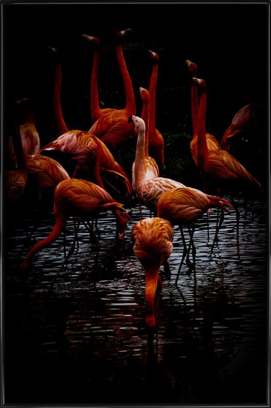 Dark Flamingos Framed Poster