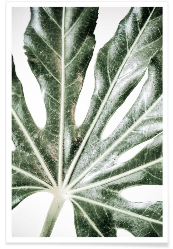 Light Palm Poster