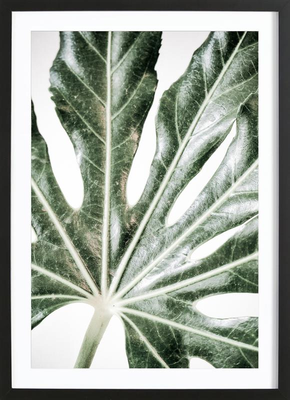 Light Palm -Bild mit Holzrahmen