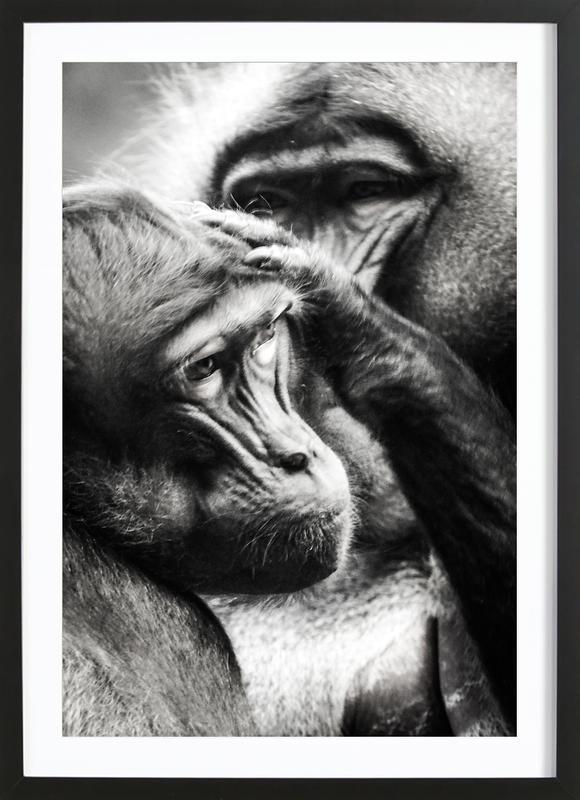 Monkey Grooming -Bild mit Holzrahmen