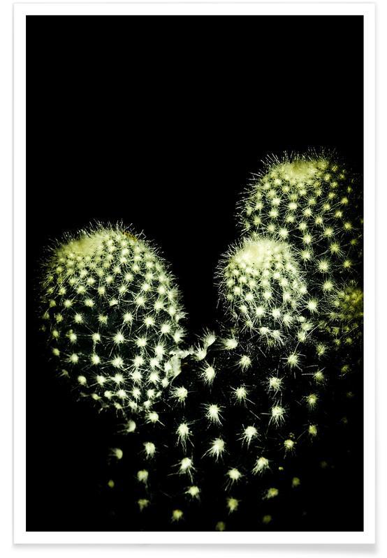 Cactussen, Dark Cactus poster