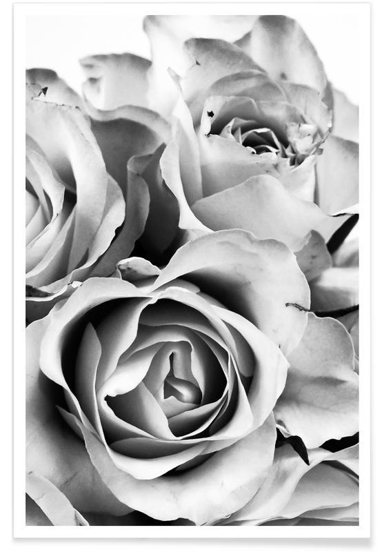 Rozen, Zwart en wit, Flowers for my Mom poster