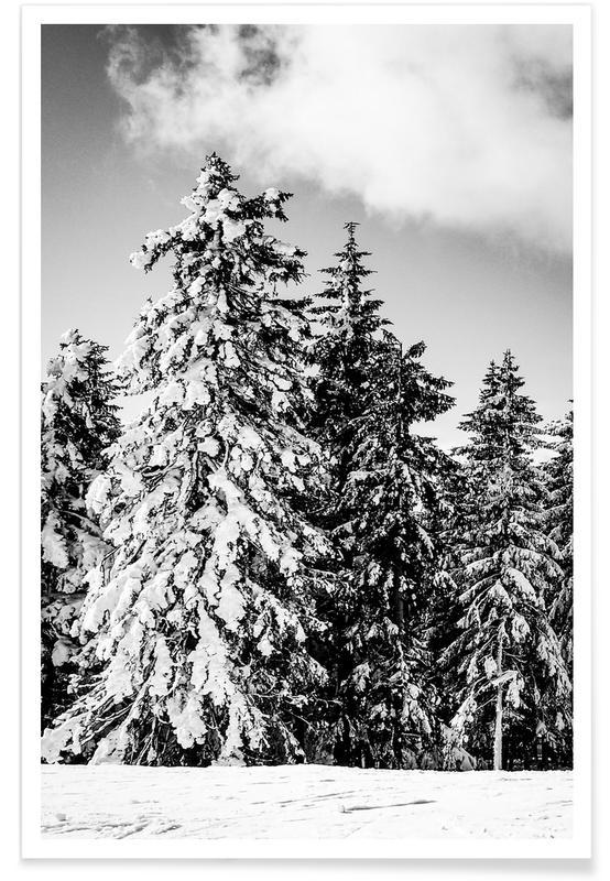 Zwart en wit, Bossen, Bomen, Snowy Trees poster