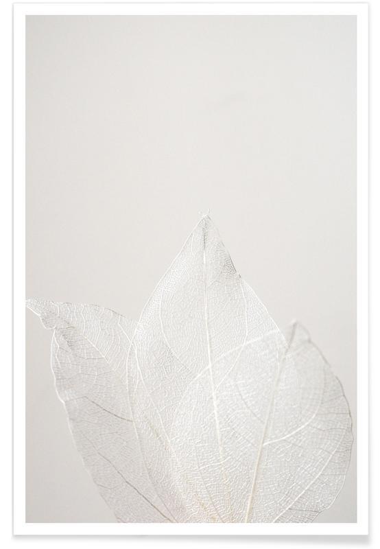 Bladeren en planten, Light Skeleton Leaves poster