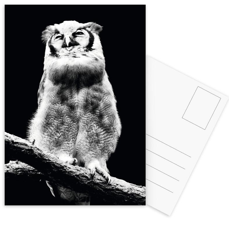 Chouettes, Noir & blanc, Dark Owl cartes postales