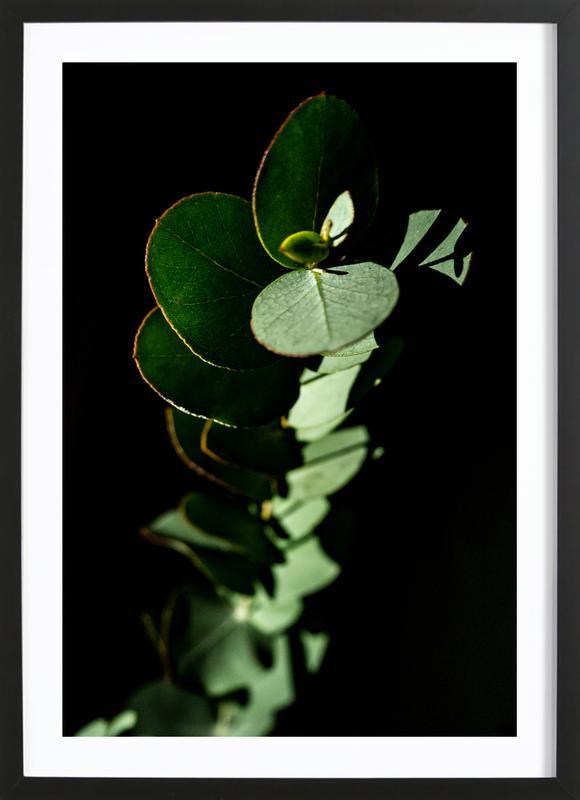 Nina's Eucalyptus -Bild mit Holzrahmen