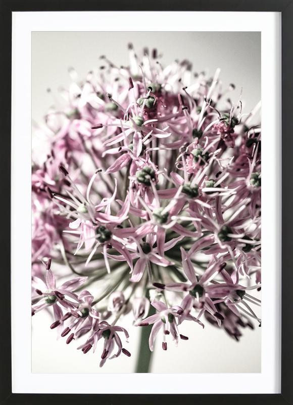 Marlies' Dandelion -Bild mit Holzrahmen