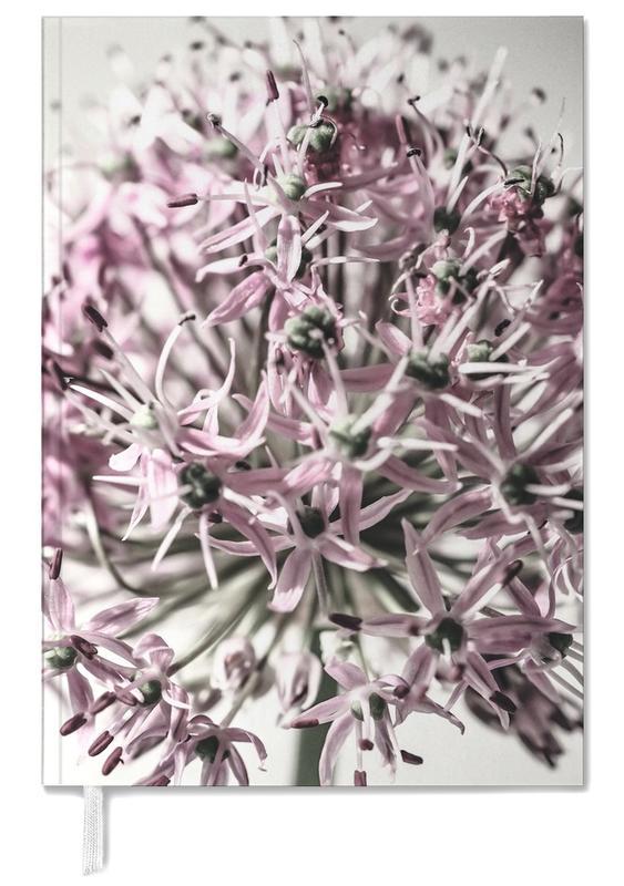 Marlies' Dandelion -Terminplaner