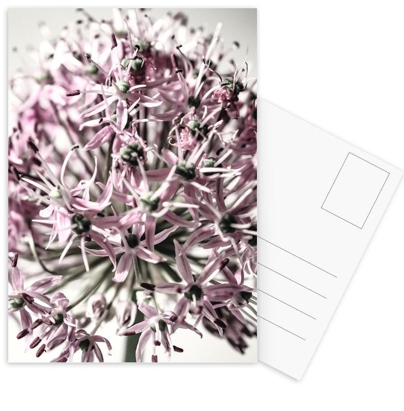 Marlies' Dandelion -Postkartenset
