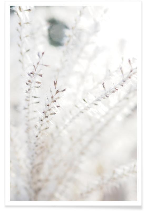 Bladeren en planten, Michael's Grass poster